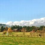 farmland-edit